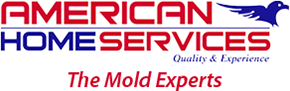 American Home Services in Maryland for Mold Removal